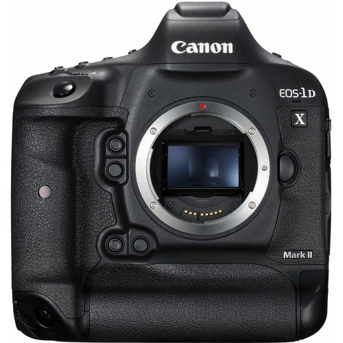 Canon EOS 1DX Mark II Body for sale