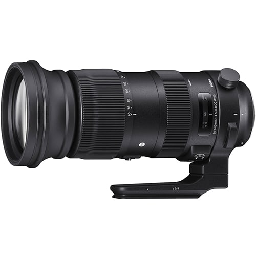 Sigma 60-600mm f/4.5-6.3 DG OS HSM Sports for Canon for sale